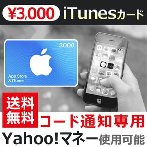 iTunesカード 3000 Apple プリペイドカード コード 通知 ヤフーマネー使用可