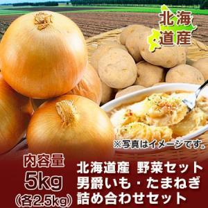 「北海道産 野菜セット 送料無料」北海道のたまねぎ・男爵いもをセット「北海道 野菜セット 送料無料」各Lサイズ (各2.5kg) 合計5kg(5 キロ) 化粧箱入|pointhonpo