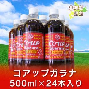 「北海道限定 ガラナ 飲料」 コアップガラナ ペットボトル 500ml 24本入り 1ケース(1箱) 「ガラナ コアップ」|pointhonpo
