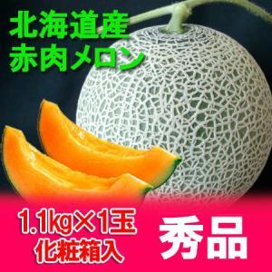 メロン 化粧箱入 1玉 1.1kg(共撰) 価格 1150円 北海道の赤肉 メロン|pointhonpo