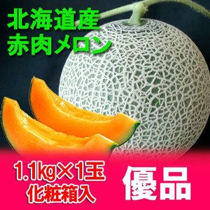 北海道 メロン 化粧箱入 1.1kg 1玉(共撰)価格 1080円 北海道産 メロン|pointhonpo