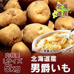 「北海道 じゃがいも だんしゃく」 美味しい北海道産のじゃがいも 男爵いも Lサイズ 5kgをお届け!!価格 1200 円|pointhonpo