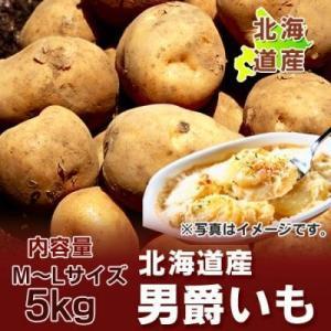 「北海道 じゃがいも 男爵」 美味しい北海道産のじゃがいも 男爵いも M〜Lサイズ 約5kgをお届け!!価格 1100 円|pointhonpo