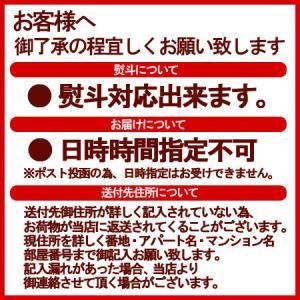 「半生うどん 送料無料」北海道産小麦を使用した半生うどん セット (笹うどん・かぼちゃうどん) 240 g(約2人前)×2個(2袋) 価格 850 円|pointhonpo|02