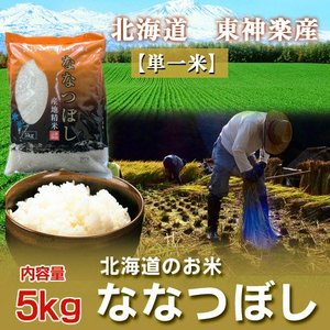 北海道米 ななつぼし 白米 30年米 北海道産米 東神楽産米 ななつぼし 5kg お米 価格 2130円|pointhonpo