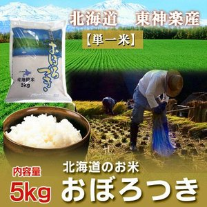 「北海道産 米 おぼろづき」 29年産 北海道 東神楽町産 おぼろづき米 5kg|pointhonpo