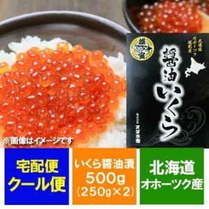 「北海道のいくら 醤油漬け」「いくら 500g」いくら醤油漬 500g (250g×2) 価格 7990円|pointhonpo