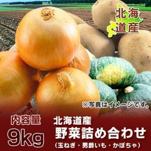 「北海道 野菜セット 送料無料」 北海道産 男爵いも たまねぎ・かぼちゃセット 計9kgの北海道産の野菜セット 価格 2880 円|pointhonpo