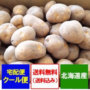北海道新じゃがいも インカのめざめ 送料無料 北海道産 いんかのめざめ じゃがいも 5kg(5キロ)詰め SS〜Mサイズ 価格 3333円 ゾロ目|pointhonpo