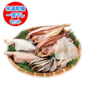 「北海道 干物セット 送料無料」 氷温乾燥 一夜干し ほっけ/真いか/なめたかれい/宗八かれい/こまい セット 価格 5000 円|pointhonpo
