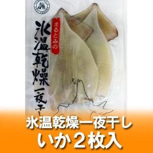 「北海道 いか」北海道産 冷凍スルメイカ 氷温乾燥 一夜干し イカ(真いか) いか 2枚入り(約110g×2)×1個「スルメイカ 干物」 pointhonpo