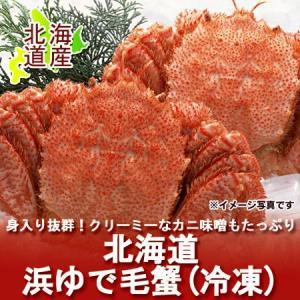 「北海道 毛ガニ 冷凍」 北海道で水揚げされた「浜ゆで毛がに」 北海道産の毛蟹 2尾 合計約880g 価格 5,700円|pointhonpo