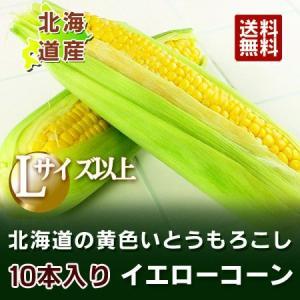 とうもろこし 北海道 とうもろこし 送料無料 北海道産の黄色いとうもろこし(夢のコーン・ゴールドラッシュ・サニーショコラ)  L/2L混合 10本 価格 2990円|pointhonpo