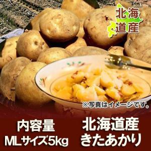 「北海道 じゃがいも 送料無料 きたあかり」 北海道産 ジャガイモ 北海道産 黄色いじゃがいも キタアカリ 栗じゃが M〜Lサイズ 5kg 価格 2160円|pointhonpo