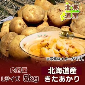 「北海道 じゃがいも きたあかり」 北海道産 黄色いじゃがいも キタアカリ 栗じゃが Lサイズ  5kg 価格 1350 円|pointhonpo