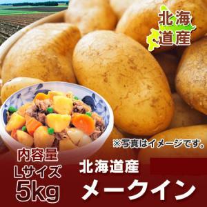 「北海道 じゃがいも メークイン」 北海道産のメークイン じゃが芋 内容量:Lサイズ 5kg 価格 1600 円|pointhonpo