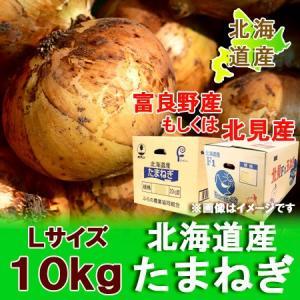 北海道 玉ねぎ 10kg 送料無料 玉葱(たまねぎ) 北海道産 Lサイズ 10kg 価格 2480 円 北海道の玉ねぎを送料無料|pointhonpo