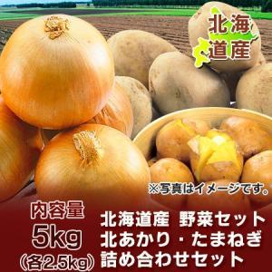 「北海道 じゃがいも 送料無料 きたあかり」北海道産 野菜 北海道産の北あかりとたまねぎ 野菜セット 野菜詰合せ Lサイズ 5kg(各2.5kg) 化粧箱入り 2,380円