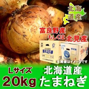玉ねぎ 北海道 20kg 送料無料 共選 北海道産 玉葱/たまねぎ/玉ねぎ 20kg Lサイズ 価格 3980 円 野菜 玉ねぎを送料無料|pointhonpo