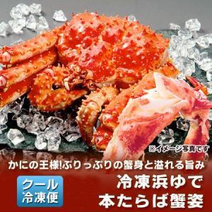 タラバガニ たらば蟹 姿 たらばがに を存分に堪能できるボリュームの、浜ゆでたらば蟹 姿 ボイル 1尾/約1.5kg(1500 g) 価格 13630 円  送料無料 カニ 冷凍|pointhonpo