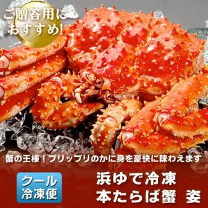 タラバガニ たらば蟹 姿 たらばがに を存分に堪能できるボリュームの、浜ゆでたらば蟹 姿 ボイル 1尾/約1.7kg(1700 g) 価格 15000 円 送料無料 カニ 冷凍|pointhonpo