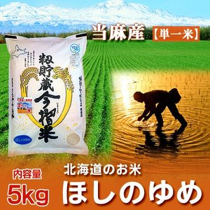 「北海道 米 ほしのゆめ米 5kg」 29年産米 北海道米 当麻産 籾貯蔵 今摺米ほしのゆめ 5kg|pointhonpo