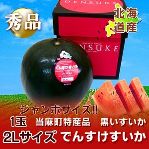 「北海道 すいか 」 当麻町 特産品 当麻農協 でんすけすいか 秀品 2L 1玉 価格 5500 円【でんすけすいか】|pointhonpo