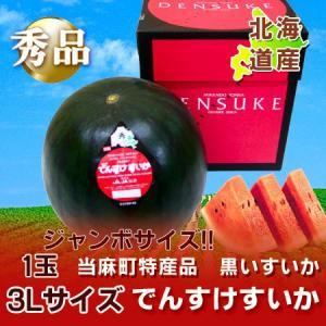 「北海道 すいか」 北海道 特産品 当麻農協 「でんすけすいか/でんすけスイカ/デンスケスイカ」 秀品 3L 1玉 大特価¥6000【でんすけすいか】|pointhonpo