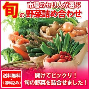 野菜セット 送料無料 野菜詰め合わせ セット 価格 4980円 旬の野菜セットを贈答品で北海道から野菜を|pointhonpo