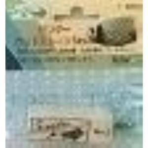 【発売元】 スペクトラムブランズジャパン  【商品説明】 天然素材製品で、淡水・海水両用。微細な気泡...