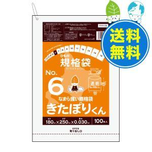 北海道規格 ひも付規格袋6号0.03mm厚 透明 100枚x60冊  1冊あたり123円 FHH-06 きたぽりくん|poly-stadium