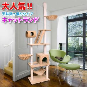 キャットタワー 天井突っ張り 猫 ねこ ネコ タワー 多頭飼い 爪とぎ ハウス ハンモック 猫のおもちゃ ランド A55AA|pond