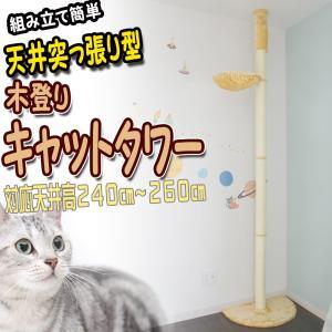 突っ張り 木登り キャットタワー ポール ハンモック付 猫ちゃんタワー 爪とぎ 遊び場 ネコ ねこ ペットグッズ PT0020A|pond