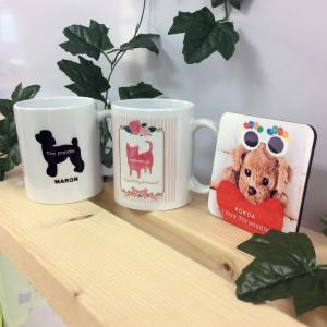 オリジナルコースター ペット・犬・トッキッキ・ご当地物(新潟)◆送料無料  ポイント消化 プレゼント ホワイトデー|ponta-ponta