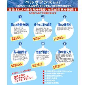クールベスト・暑さ対策グッズ・熱中症予防に・ひんやりウェア MSサイズ|poohkuru|06
