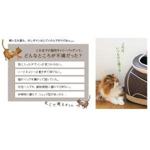 送料無料 Daisuki リュック型キャリーバッグ 猫用 Mサイズ|poohkuru|05
