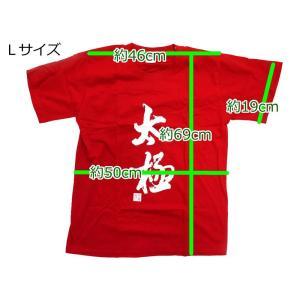 Tシャツ「太極 黒」 popi 05