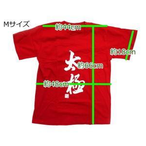 Tシャツ「太極 黒」 popi 06