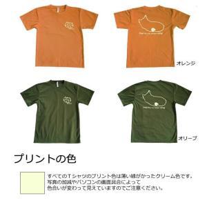 太極拳猫Tシャツ|popi|04
