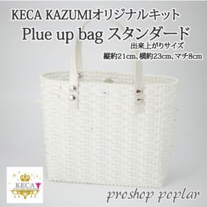 手芸 キット ラ メルヘン テープ Plue up bag スタンダード 1セット バッグ 取寄商品|poplar