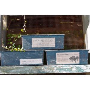 多肉植物を植えるのに最適なシャビーペイントのリメイクパウンド型です。 サイズは 幅18cm×高さ6c...