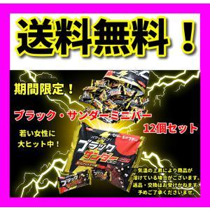 数量限定 有楽製菓 チョコレート ブラックサンダー ミニバー 13g×12個  ペイペイ消化 ポイン...