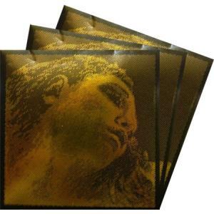 EvahPirazzi Gold エヴァピラッツィゴールド バイオリン弦 2A・3D・4Gセット 【メール便対応商品】
