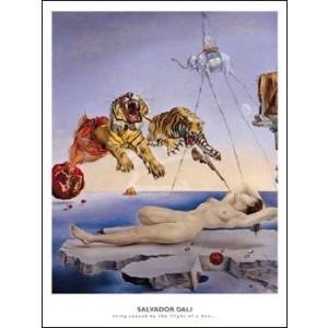 【アートポスター】目覚めの一瞬前、ザクロの実のまわりを一匹の蜜蜂が飛んで生じた夢(610×815mm) ダリ|poster