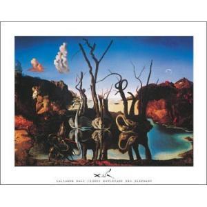 【アートポスター】水面に象を映す白鳥(610×815mm) ダリ|poster