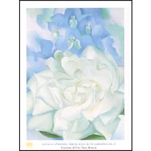 【アートポスター】 オキーフ 白い薔薇とデルフィニウムNo. 2 60cm×80cm|poster