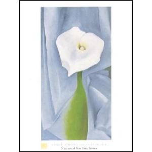 【アートポスター】 オキーフ Calla Lily on Grey 60cm×80cm|poster