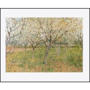 -ゴッホ アートポスター-花咲くあんずの果樹園(40cm×50cm) -おしゃれインテリアに-|poster