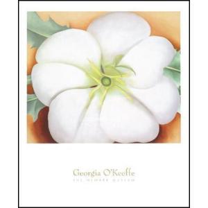 【アートポスター】White flower on Red Earth, No.1(712×864mm) オキーフ|poster