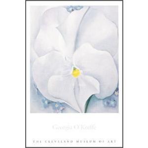【アートポスター】White Pansy(610×915mm) オキーフ|poster